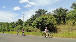 Unternehmungen Phuket
