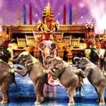 Phuket Veranstaltungen mit Easy DayPhuket zur Fantasea Show