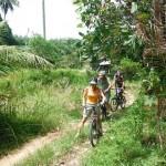 Country roads in Yao Noi