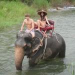 Elefantenreiten in Phang Nga