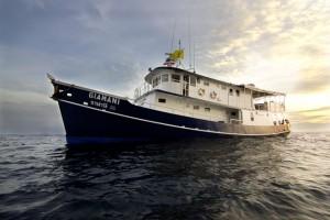 Bootsausflug nach Phi Phi Island mit Übernachtung