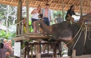Elefantenreiten in Phuket - Auf gehts