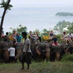 Elephant Trekking Phuket - Group Picture